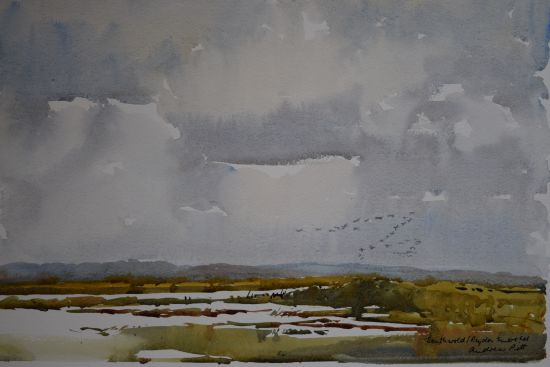 Southwold Marshes
