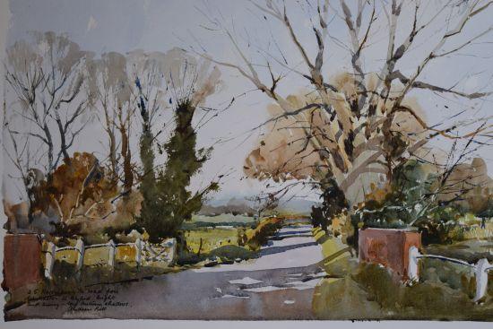 Autumn Trees - Wenhaston