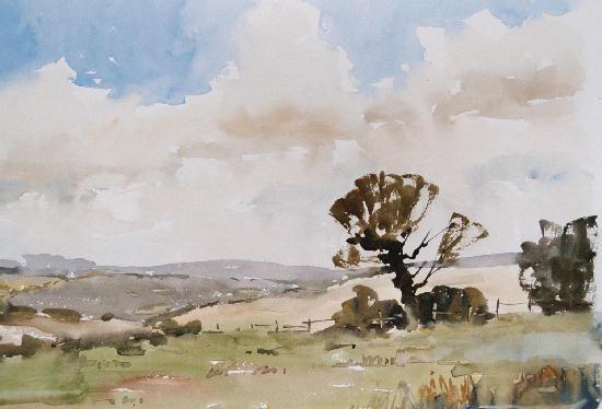 Norfolk Fields