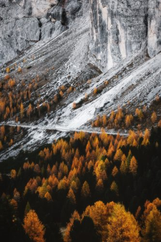 Tapeta na mobil - podzim v horách