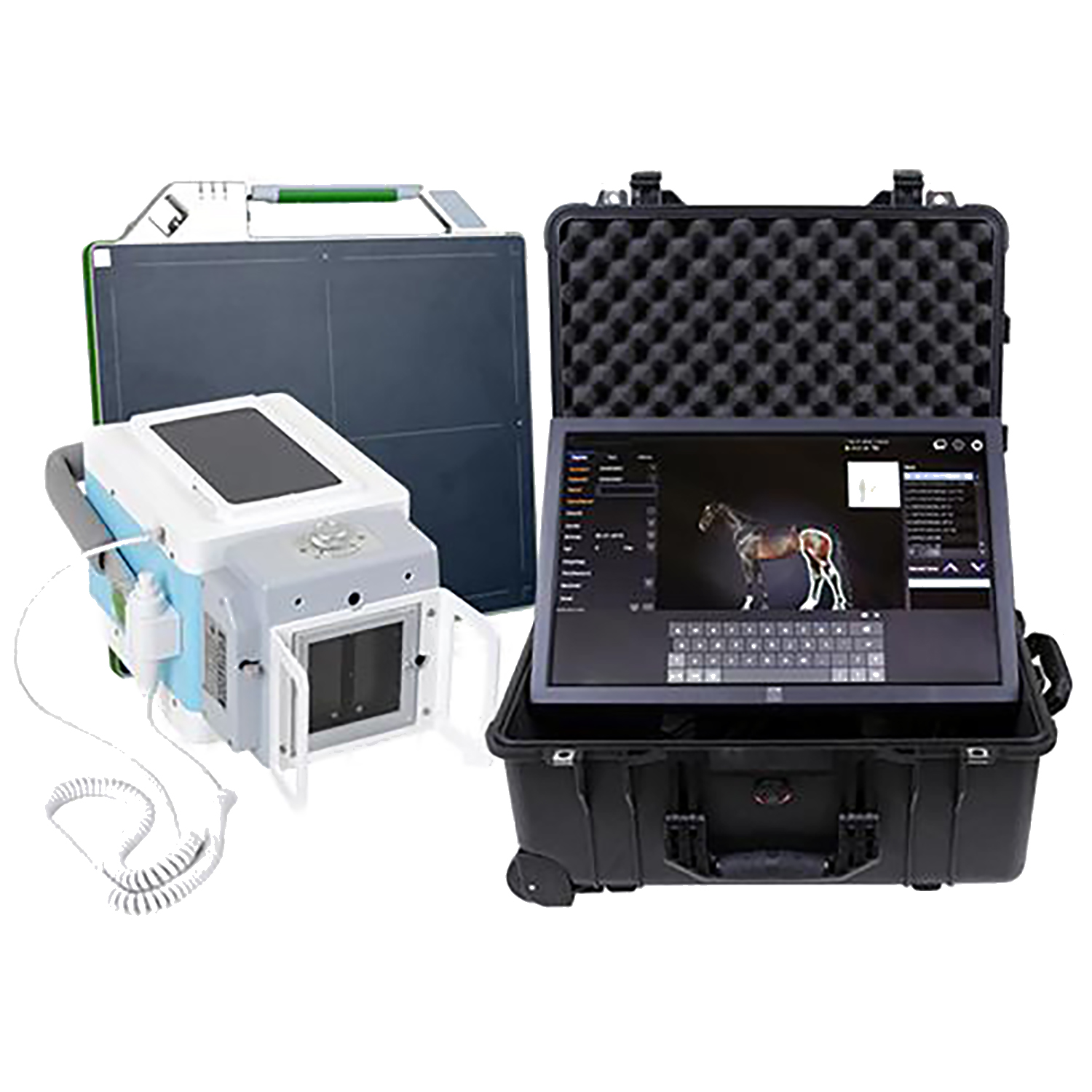 Avante Wireless Equine DR X-Ray System