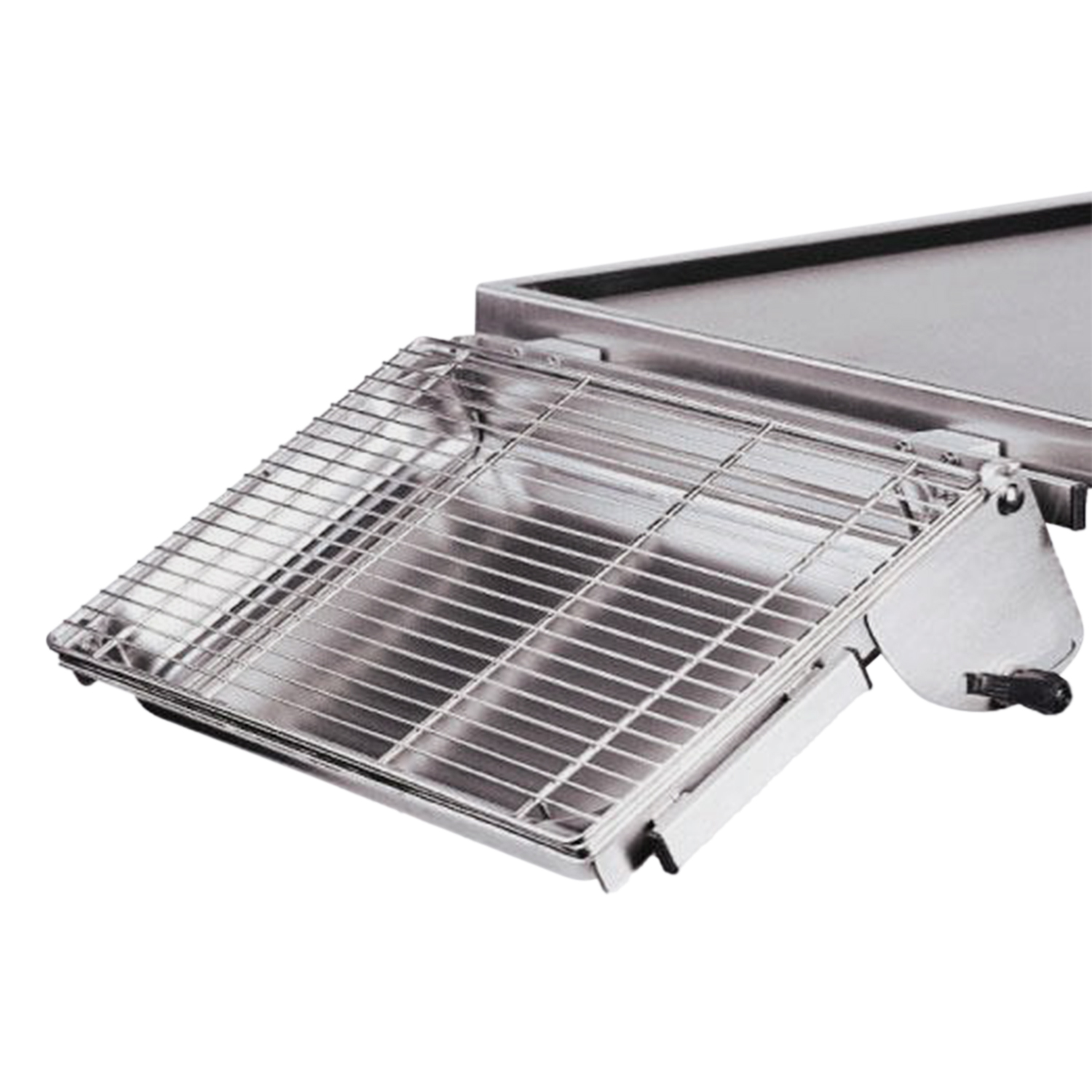 Tilting Stainless Steel Dish with Grid