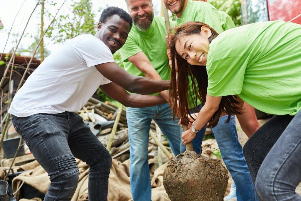 Team planting trees in employee volunteer program