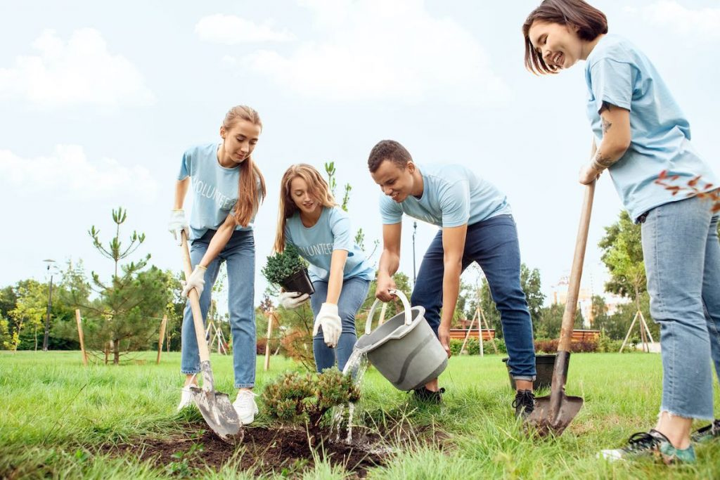 Team planting trees in corporate 'giving back' initiative