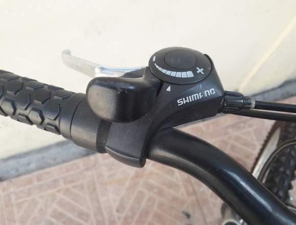 Bicicleta Santo rin 20