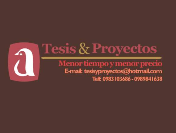 Servicio de realización Tesis y Proyectos