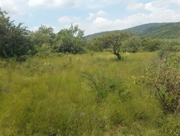 Hermoso terreno en Morelos