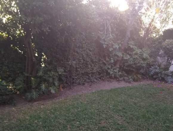 Hermosa Casa Amueblada con Jardín en Coyoacán