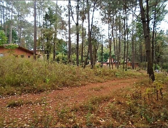 Encantador terreno en el bosque en Avándaro