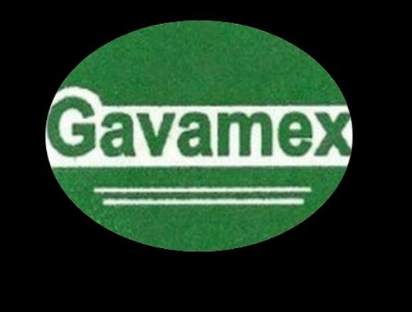 GALVANIZADORA DEL VALLE DE MEXICO - GAVAMEX