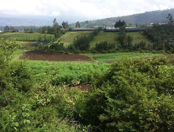 Terrenos En Guayllabamba