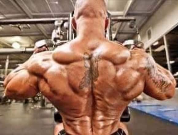 Esteroides gym fitnes