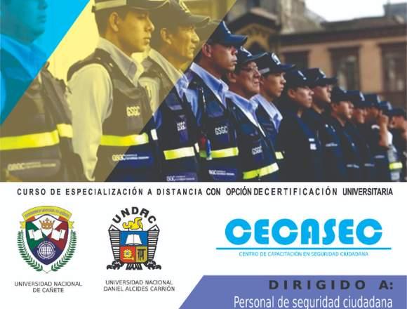 CURSO DE SEGURIDAD CIUDADANA