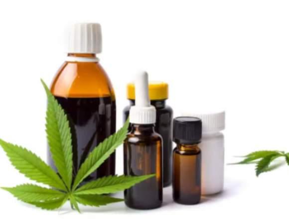 plantas naturales medicina cuerpo y mente