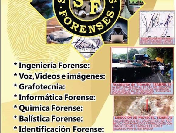 PERITO FORENSE.  ASESORA PROCEDIMIENTOS FORENSES