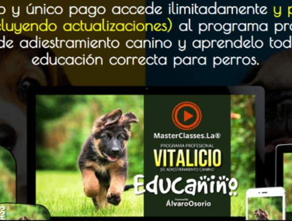 Educanino adiestramiento canino
