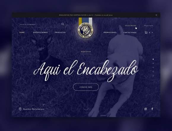 Diseño Gráfico Y Diseño De Páginas Web Freelance