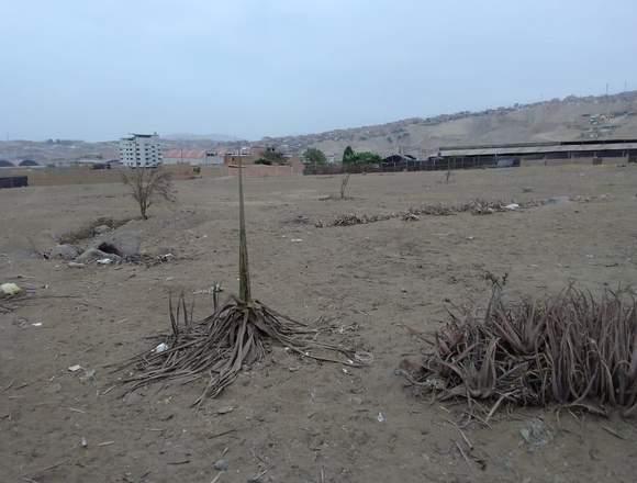 Terreno Industrial 8200 m2 Zapallal - El Dorado