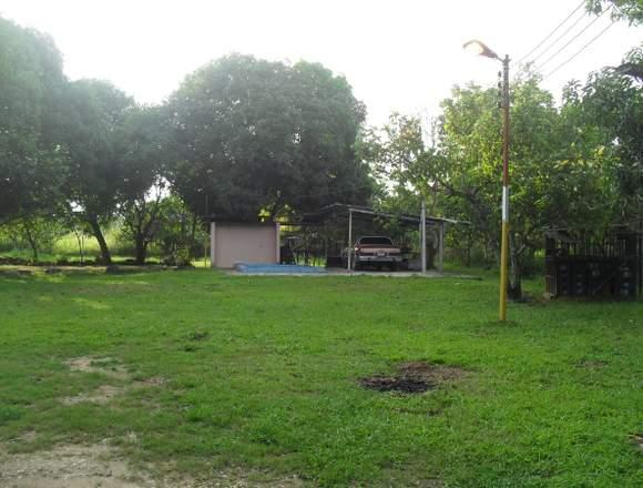 SKY GROUP Vende Terreno en Tocuyito La Yaguara