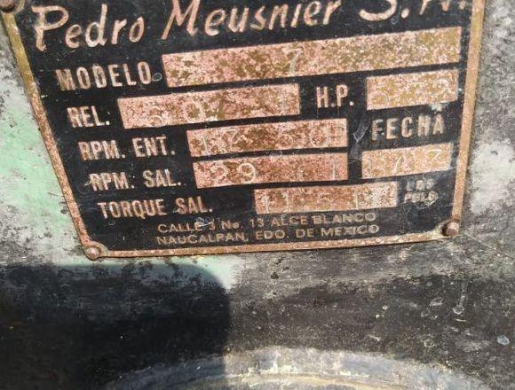 REDUCTOR DE VELOCIDAD PEDRO MEUSNIER