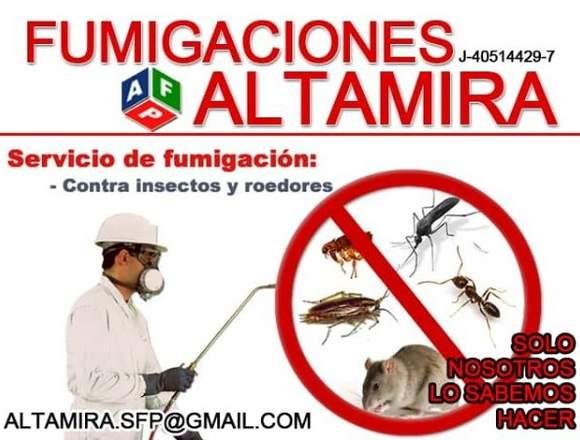 Altamira Servicio Fumigacion, Maracaibo04146205546