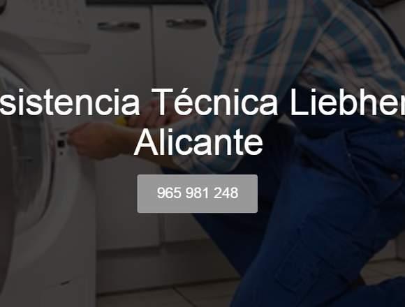Servicio Técnico Liebherr Alicante 965 217 105