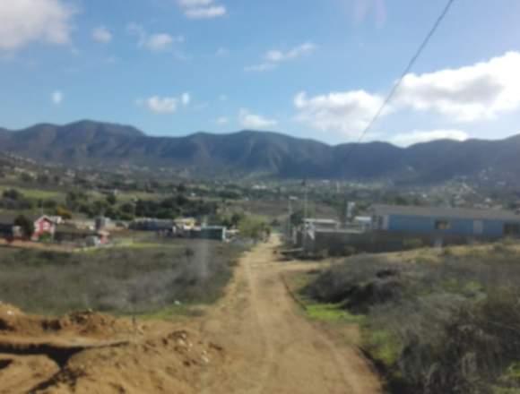 vendo en valle de guadalupe 370 m ruta vino