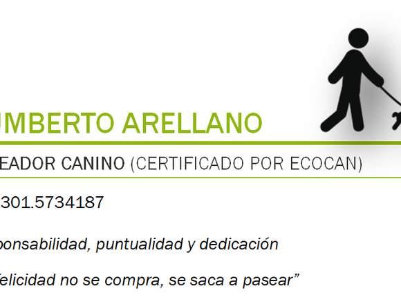 Paseador Canino Certificado