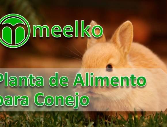 Planta de Alimento para Conejo meelko