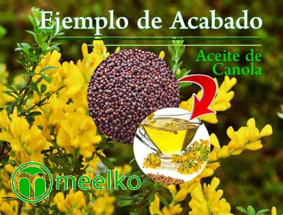 Planta De Prensado De Aceite de Canola meelko
