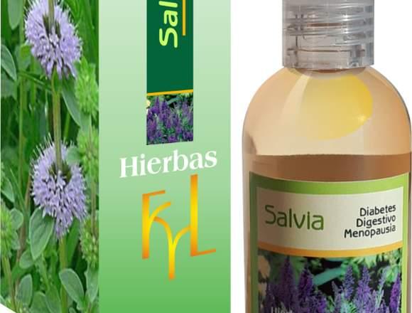 Salvia, diabetes, digestivo, menopausia