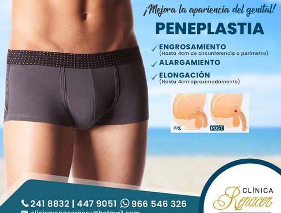 Cirugía del genital masculino - Clínica Renacer