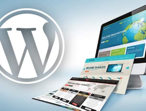 Diseñador Wordpress Freelancer Ofrece Servicio