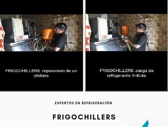 Tecnico en camaras frigorificas (frigochillers)