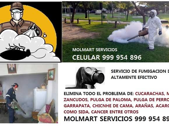 fumigar de rata, eliminacion de ratones 999954896
