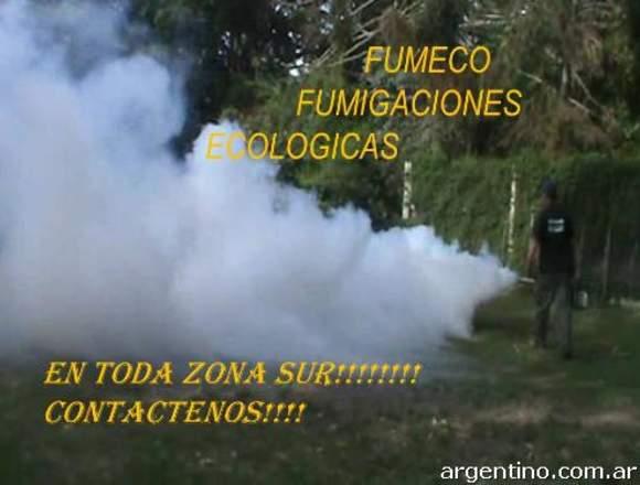 fumigaciones y control de plagas en berazategui
