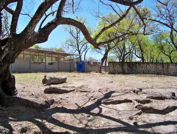 Rancho Ganadero con abundante Agua zona Tesistan