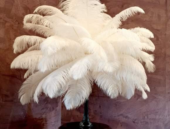 plumas de avestruz para la decoración