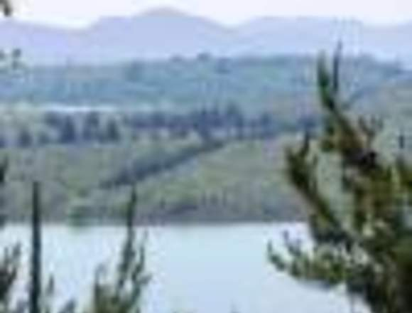 Percela lago colbun muy barata