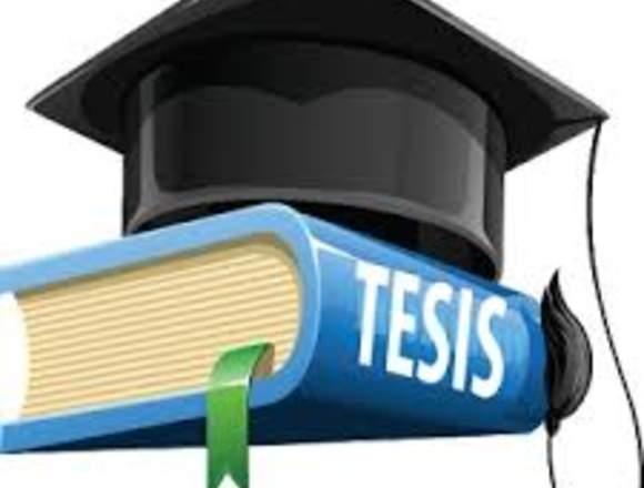 Elaboracion y asesoria de Tesis de Titulo