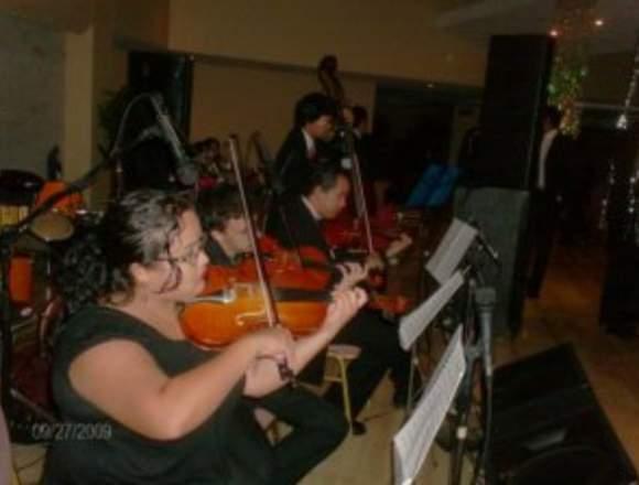 violines de ensueño en maracaibo
