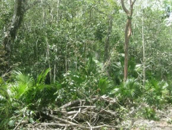 Terreno en Cancún Quintana Roo