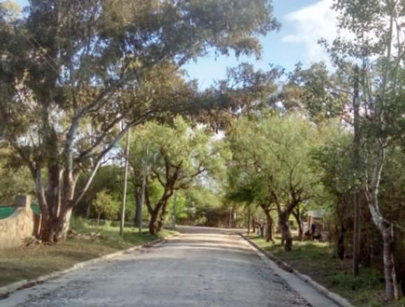 DUEÑO VENDE LOTES  EN SIERRAS  CORDOBA C/ESCRITURA