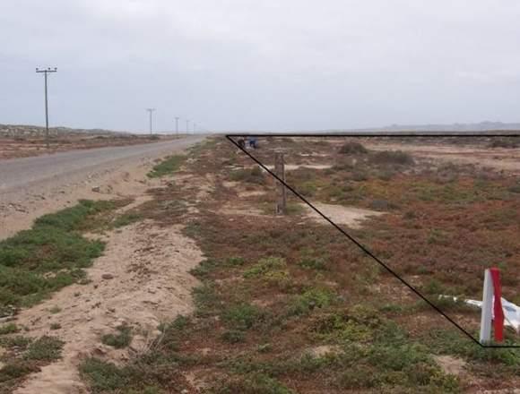 Parcela de 5.000 M2 en camino a Punta de Choros.