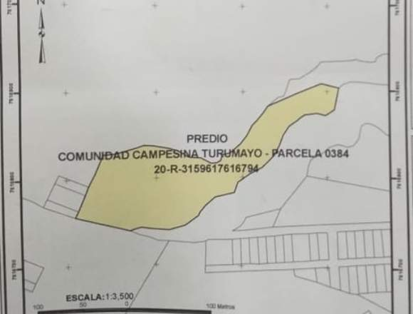 NUMERO DE TITULO: PPD - NAL - 3150003