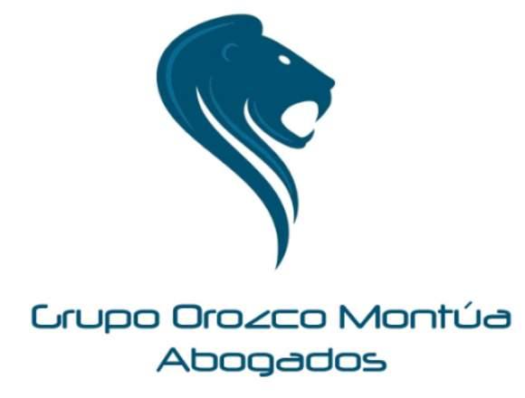ABOGADO MINERO AMBIENTAL