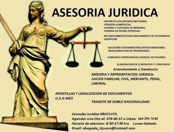 ASESORIA Y REPRESENTACION JURIDICA