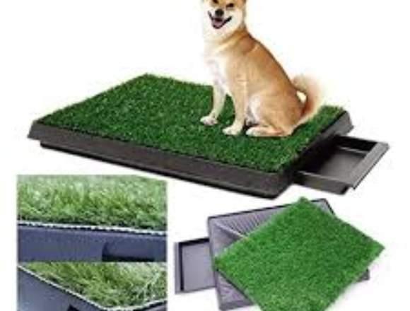 Césped alfombra para perros con bandeja de drenaje