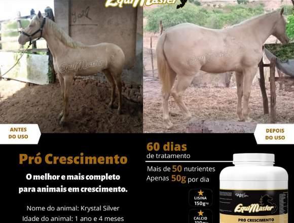 EquiMaster Pro Standart 3kg