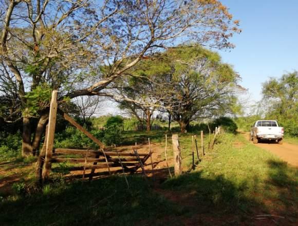 Vendo 27 hectáreas de campo a 6 Km de la Ruta 8